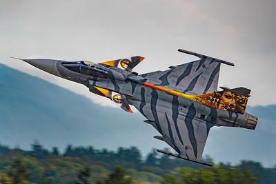 Czech Air Force / Saab JAS 39C Gripen / 9241 / Tigermeet Livery
