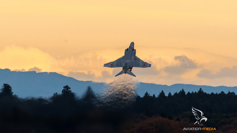 JASDF 301 Hikotai / McDonnell Douglas F-4J Phantom II
