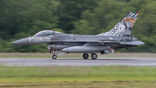 Portuguese Air Force Esq 301 / Lockheed F-16AM Fighting Falcon / 15105 / Tigermeet 2019 Livery
