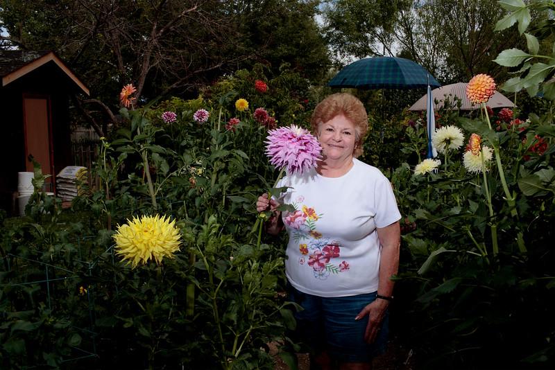 Cindy Sprague poses for a portrait in her Dahlia garden on Sept. 3, 2015 in Loveland. (Photo by Trevor L Davis/Loveland Reporter-Herald)