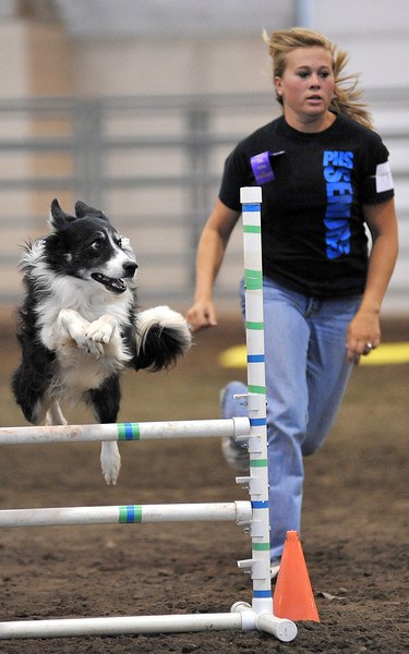 Megan Preuit, 18, leads Tuff around the agility course Friday during the 4-H Dog Agility Show in the Ranchway Feeds Indoor Arena at The Ranch. The show attracted many young people from around the Loveland area.