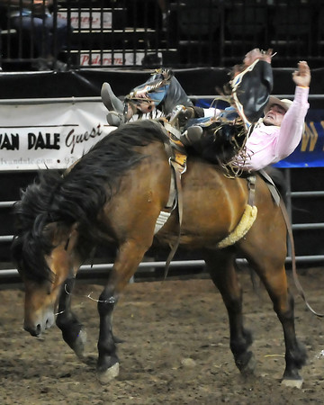 Will Lowe competes in the bareback event Tuesday during the Larimer County Rodeo at the Budweiser Events Center.