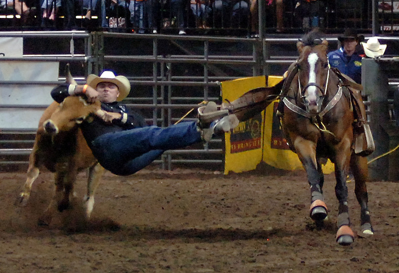 Matt Reeves of Pampa, Texas, gets ahold of a steer before his feet leave the stirrups Monday during the steer wrestling at the PRCA Rodeo at The Ranch in Loveland.