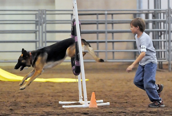 Nine-year-old Nathan Meiners of Nunn, Colo. runs alonside his dog, Liesl, while competing in the 4-H dog agility competition Friday during the Larimer County Fair at The Ranch.