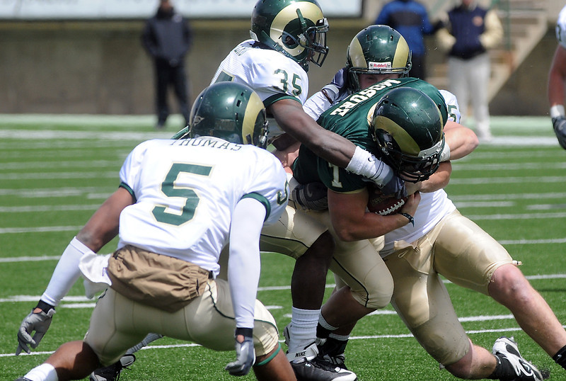 Colorado State University defenders Momo Thomas (5), Ivory Herd (35) and Alex Williams converge on running back John Mosure during the football team's Green and Gold game on Saturday, April 24, 2010 at Hughes Stadiium in Fort Collins.