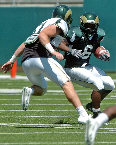 Colorado State University senior linebacker Alex Williams homes in on ball carrier Chris Nwoke during a situational scrimmage Saturday afternoon at Hughes Stadium in Fort Collins.