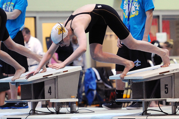 Thompson Valley High School freshman Eryn Eddy dives into the pool at the start of the 100-yard freestyle finals during the Class 4A State Swimming Championships on Saturday, Feb. 11, 2012 at Veterans Memorial Aquatics Center in Thornton.