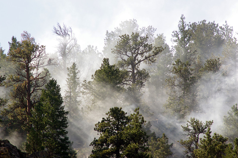 Smoke shrouds trees Wednesday just south of the Big Thompson River west of Loveland from a small wildfire.
