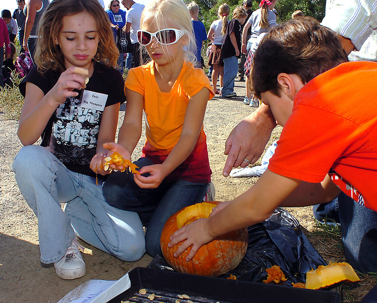 "Big Thompson Elementary third-graders separate pumpkin seeds from the ""guts"" Friday at the High Plains Environmental Center. From left they are Emily Soule, 9, Tessa Dawson, 7, and Anthony Pierro, 8. The students will return next spring to plant the seeds they harvested."