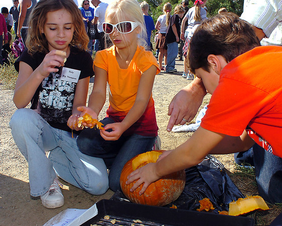 """Big Thompson Elementary third-graders separate pumpkin seeds from the """"guts"""" Friday at the High Plains Environmental Center. From left they are Emily Soule, 9, Tessa Dawson, 7, and Anthony Pierro, 8. The students will return next spring to plant the seeds they harvested."""