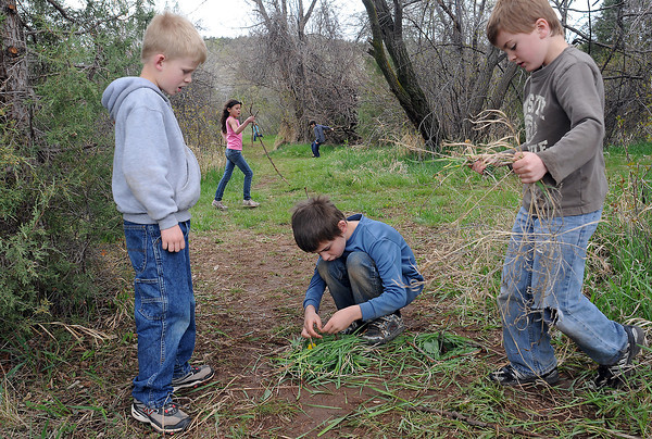 Big Thompson Elementary School first graders Cole Patton, 7, left, Adam Cagrina, 7, and Kordell Culhane, 7, work together on nature art as they build a bug house and teepee during a Green Day activity at the school on Thursday.