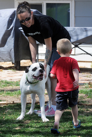 Ashley Charters and her son, Liam, 3, play in the backyard of their Fort Collins home on April 14 with their one-year-old American bulldog named Duece who recently had emergency surgery to remove a chew toy he had swallowed.