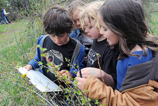 Big Thompson Elementary School students examine leaves before writing down a description of them Thursday during a nature walk at the outdoor education center as part of the school's Green Day activities. From left are Brandon Lobue, 9, Jackie Smith, 8, Kent Long, 8, and McKenna Olsen, 8.