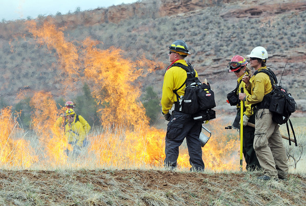 Wildland firefighters keep an eye on a section of grass that was ignited by drip torches Wednesday as part of a prescribed burn at Bobcat Ridge Open Space west of Masonville.