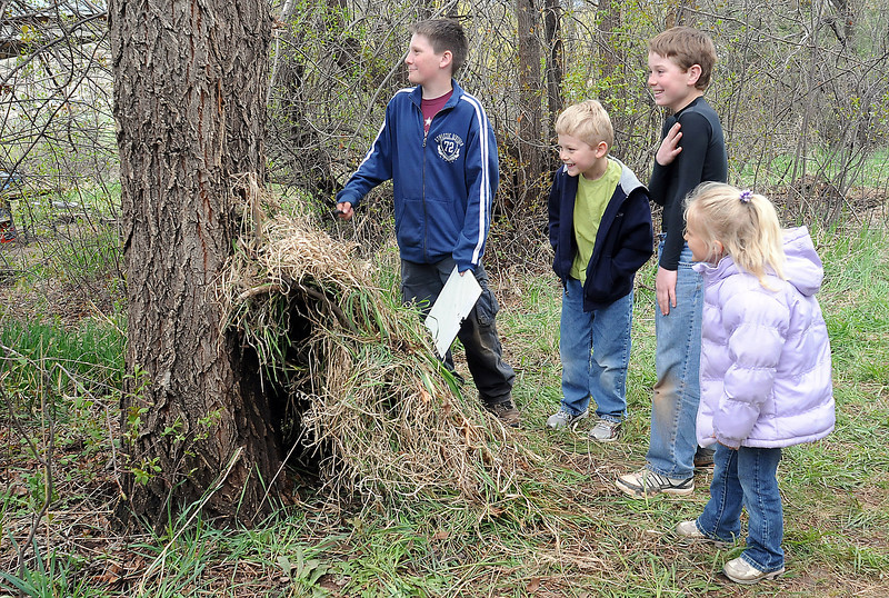 Big Thompson Elementary School students work together to describe the bark on a tree at the outdoor education center adjacent to the school on Thursday during a nature walk activity. From left are Alec Weber, 10, George Loegering, 6, Cedric Culhane, 11, and Phoenix Peterson, 5.