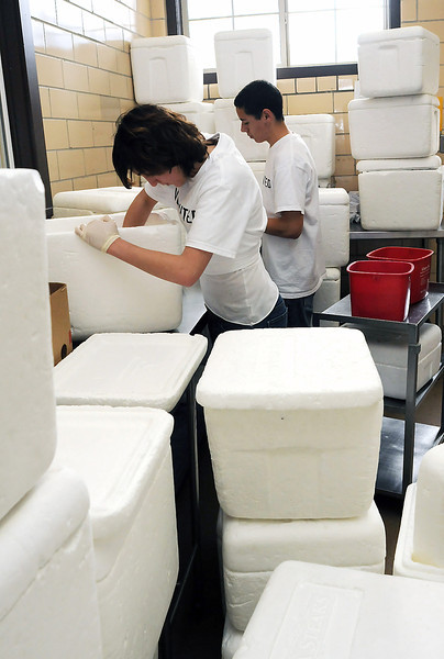Loveland High School freshman Skylar Bryant, front, and Thompson Valley freshman Greg Padilla wash out foam coolers Thursday at Meals on Wheels while volunteering for the ASB-Loveland Youth Responding to Poverty program.