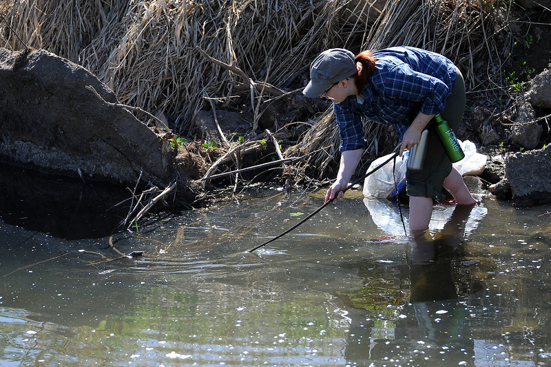 Loveland resident Liz Ansell uses a stick to dislodge a piece of trash while volunteering during the annual spring waterway cleanup along the Chubbuck Ditch near the Chilson Recreation Center.