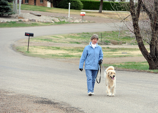Gertrud Mittermeier walks her dog Shiloh, a 3 year-old golden retriever, Tuesday on Ptarmigan Run in her Loveland neighborhood. Mittermeier asked the Larimer County commissioners Tuesday to strengthen animal control codes in her neighborhood after Shiloh was attacked by another dog while she was walking him recently. Photo by Jenny Sparks