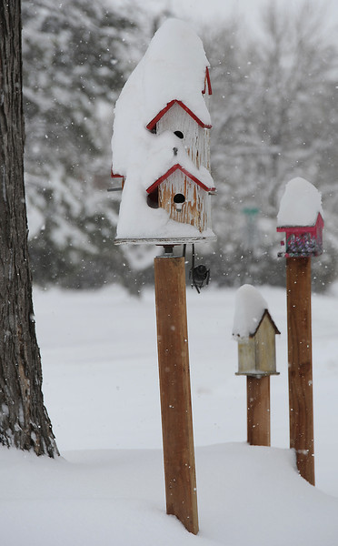 Deep snow sits on the rooftops of bird houses Wednesday in downtown Loveland.