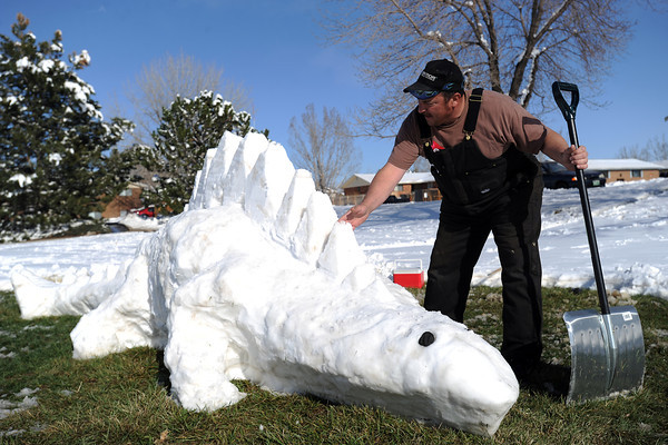 Bill Burgoyne puts some finishing touches on the dinosaur snow sculpture he built Thursday, April 18, 2013 outside his home near First Street and Dotsero Avenue in Loveland.