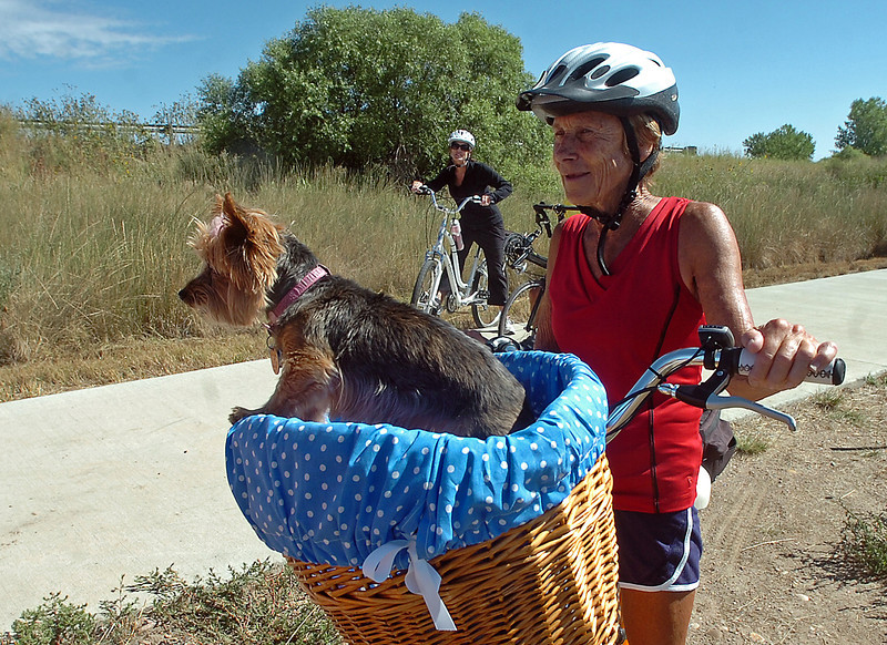 Darlene King stops to chat  where the Poudre River Trail was closed for construciton Friday in Windsor. Her  Yorkshire terrier Allie, 11, is a frequent passenger in the basket on King's bike.