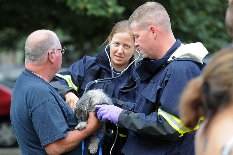 Orville Hibert, left, holds a dog name Jo Jo as Thompson Valley EMS paramedics Sara Enninga, back, and Chris Wells care for it after it was removed from a house fire on Thursday, Aug. 23, 2012 at 616 W. 9th St. in downtown Loveland.