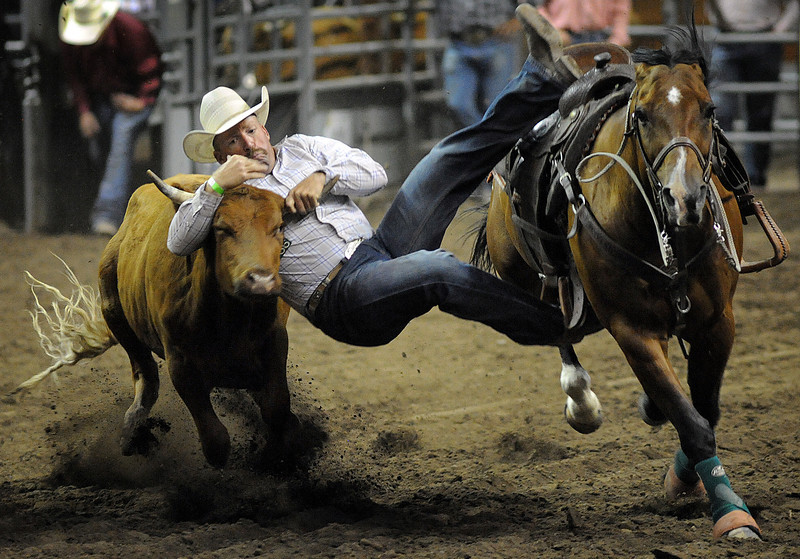 Dan Cathcart grabs hold of a steer during the steer wrestling competition on Sunday during the Larimer County Fair and Rodeo at the Budweiser Events Center.