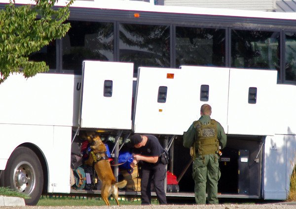 A Jefferson County Sheriff's Office dog trained to detect explosives checks out the passenger compartment of a Trailways bus Wednesday at The Ranch.