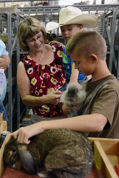 Austin Mackey, 9, right, shows his rabbits named Brownie, bottom, and Smokey to Susie Wiebers and her grandson Lane Capansky, 3, during the Larimer County Fair on Saturday, Aug. 4, 2012 at The Ranch.