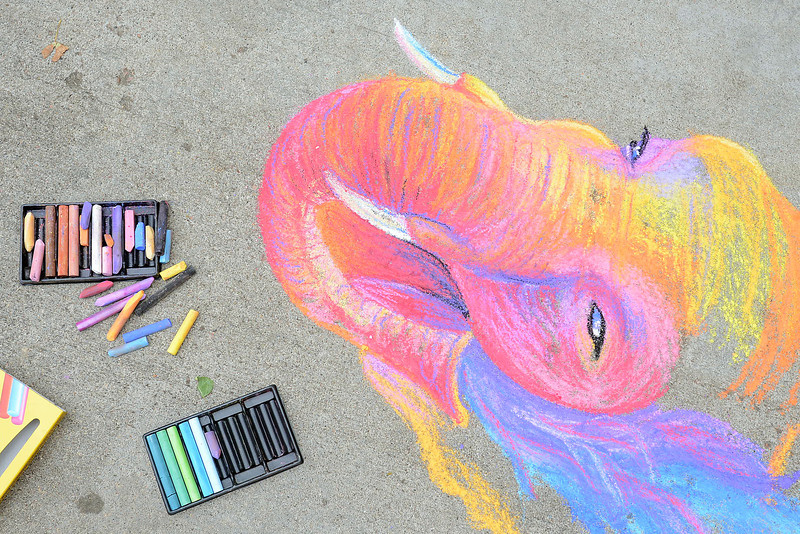 Chalk drawing by Hannah Circenis on the driveway of her home in Loveland that she drew to demonstrate her chalk-drawing skills. Hannah will draw a greyhound dog during up the upcoming Pastels on Fifth event.