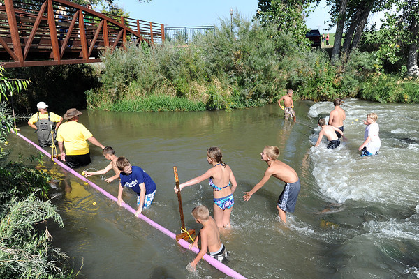 Volunteers and a group of children wade in the water as they wrangle rubber ducks floating down the river at Fairgrounds Park on Saturday, Aug. 25, 2012 during the Rotary Club's Duck Race.