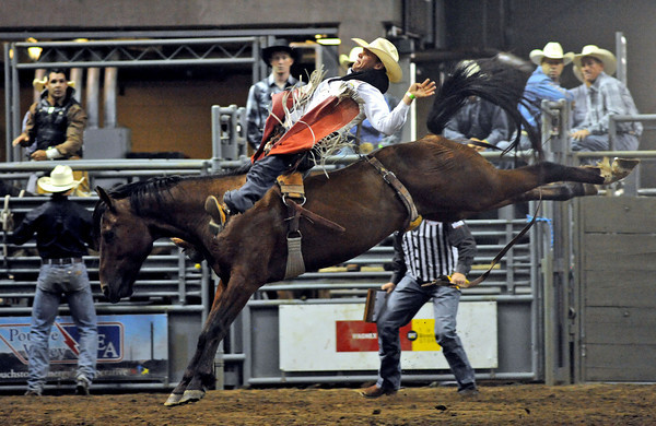Zachariah Phillips of Casper, Wyo., hangs on to a horse named First Class during the bareback competition on Sunday during the Larimer County Fair and Rodeo at the Budweiser Events Center.