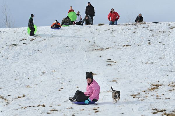 Taryn Smithey of Eaton barrels down a sledding hill at Kroh park on Dec. 13 with a dog named Daisy close behind.