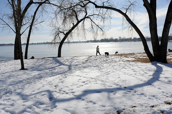Colleen Kelly of Loveland walks in North Lake Park on Tuesday with a 15-year-old German shepherd/Australian shepherd mix named Bear and a five-year-old boxer named Tom who was adopted from a rescue by Kelly's son Ian Wigington before he shipped off to serve in Iraq.