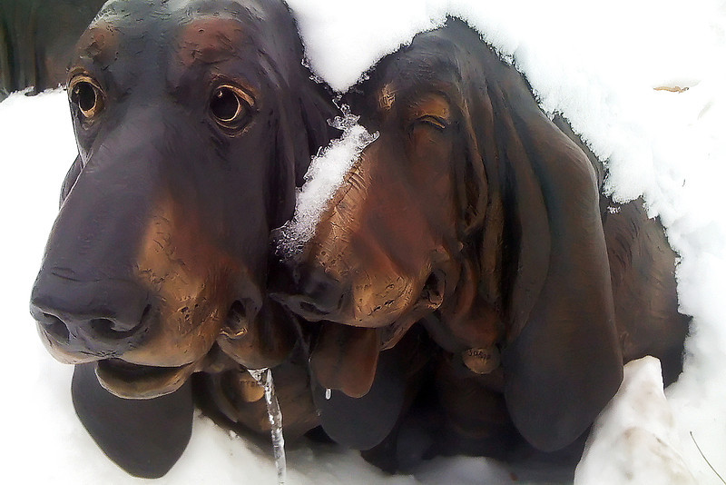 "Two dogs from Pat Kennedy's sculpture ""Molly, Deeter and Susie"" are covered in snow and ice Friday at Cleveland Avenue and Fifth Street in downtown Loveland."