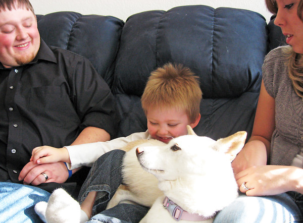 Three-year-old Theo Lambrakos plays with his dog, Summer, while sitting on the couch with his parents Theo and Lindsay in their Loveland home. Young Theo will appear Tuesday morning on an episode of the children's show PICME on the PBS Sprout Channel.