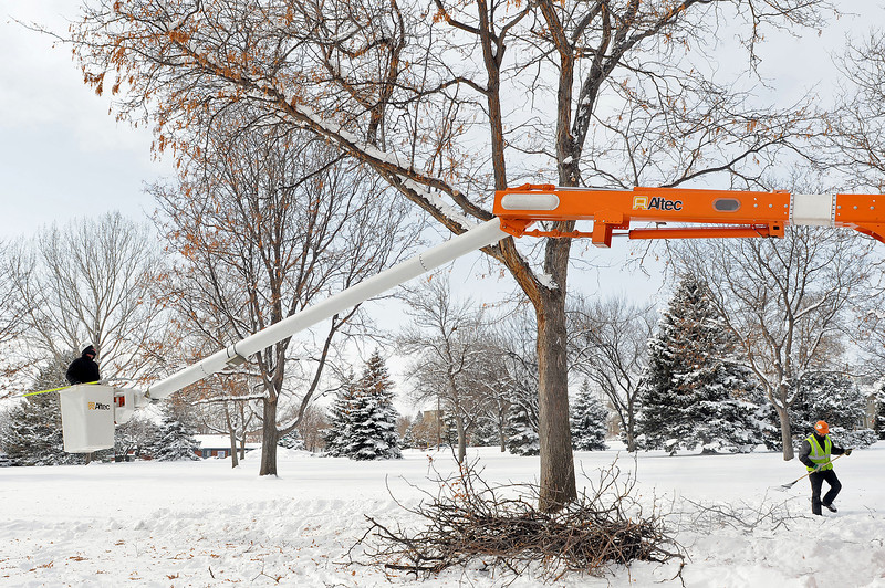 Asplundh Expert Tree Co. foreman Andrew Freese and trimmer Mario Gutierrez trim a locust tree in North Lake Park Tuesday afternoon as temperatures hover in the single digits. Since 7 a.m., the two had been cutting dead sections from the park's trees.