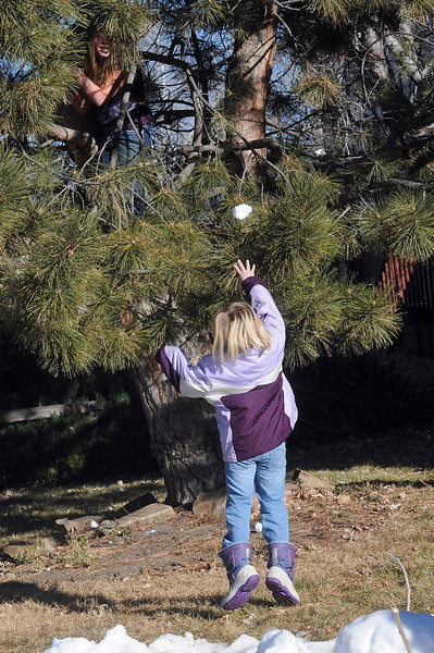 Abby Dewey, 7, throws a snowball up at her sister, Taylor, 13, who took refuge up in a tree Tuesday morning while playing together in a pile of snow at their home in southwest Loveland.
