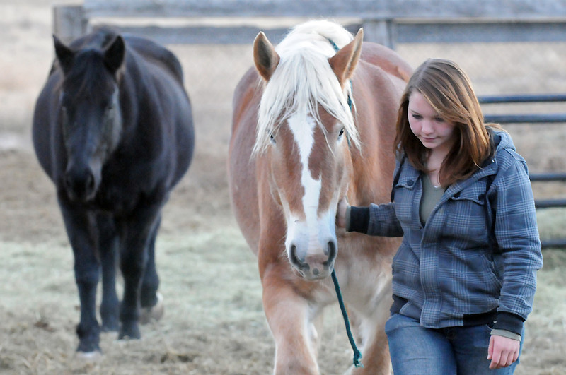 Kellie Mansfield, 15, walks with her Belgian draft horse named Maci while being followed by Jewell, at left, on Tuesday evening at a horse boarding facility in southwest Loveland.