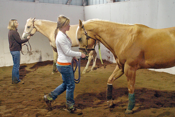 Loveland resident Leah Santillanes, front, works with her horse, Lacie, while Leah's mother, Brenda, works with her horse, Mae, during a practice session Saturday at the Lonsum Peak Equestrian Center in preparation for the upcoming National Western Stock Show in Denver.