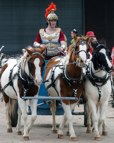 Brandon Rathbone, 19, is dressed as a gladiator as he warms up the team of horses pulling his chariot, from left, Lady, Marty and Dutchess before performing Saturday during the Big Thunder Draft Horse Show at The Ranch. It was Rathbone's final performance with the Westernaires which is a precision drill organization out of Jefferson County that provides training in western riding, precision drills and horse care for youths from nine to 19 years old.