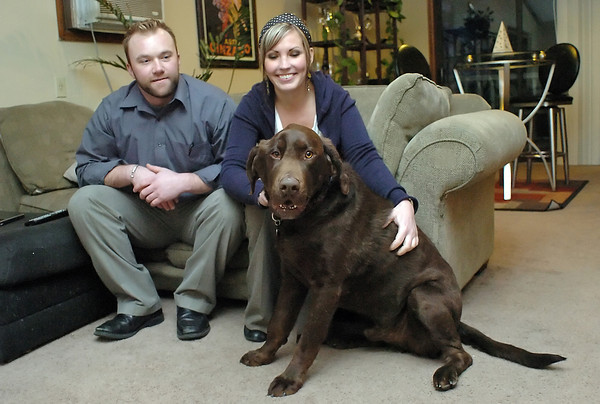 Fort Collins residents Jeff Stephen and Amy White sit with their dog, Harper, a 4-year-old chocolate lab who recently returned home from the veterinarian hospital after being injured in a fall from their pickup.