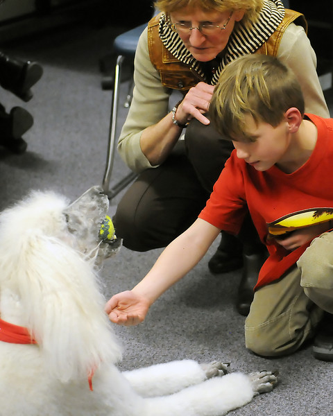 Garfield Elementary School first-grader Gage Domeier, 6, right, gets a tennis ball from standard poodle Barley while Kathy O'Loughlen looks on last Tuesday during O'Loughlen's visit to the school for the Human Animal Bond in Colorado program.