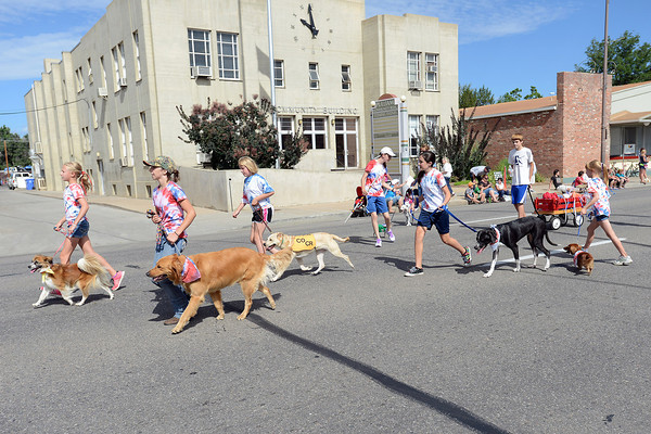 Youngsters march together with their dogs during the Larimer County Fair Parade in downtown Loveland on Saturday, July 28, 2012.