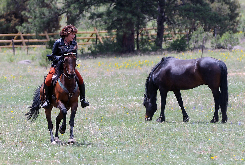 Trish Wild rides atop her horse named Maggie while her other horse, Midnight, grazes nearby on Tuesday outside Estes Park. Wild plans to sell all her belongings and take a horseback ride to Argentina.