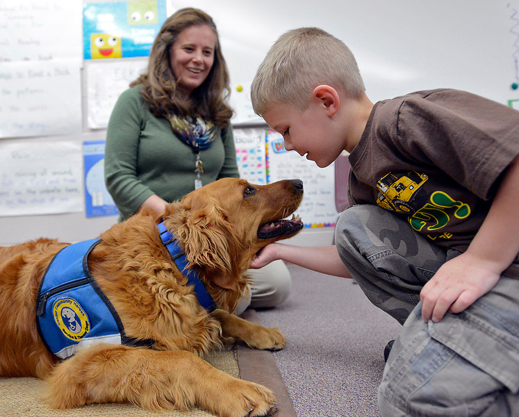 B.F. Kitchen kindergartener Jonas Houchin, 5, pets Copper, a 2 year-old golden retriever, while learning about working dogs and dog safety during class in Loveland on Thursday, March 28, 2013. Jennifer VonLintel, school counselor at B.F. Kitchen, brings Copper to school with her so he can work as a therapy dog with students.