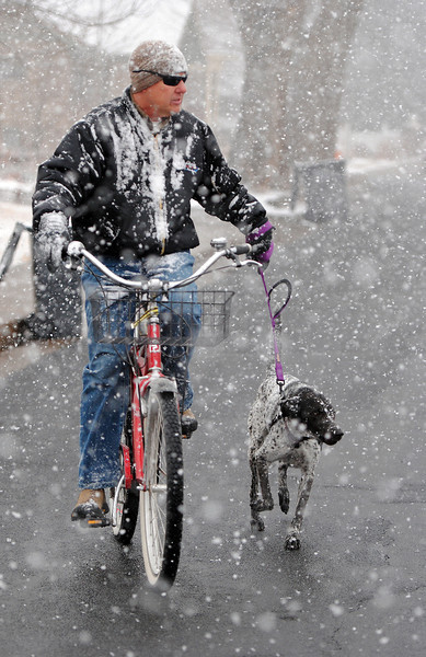 As snowflakes fall on Third Street in downtown Loveland, Danny Eubanks and his dog Molly, a 7 year-old German shorthaired pointer mix, make their way home after getting some exercise on Monday, March 4, 2013.