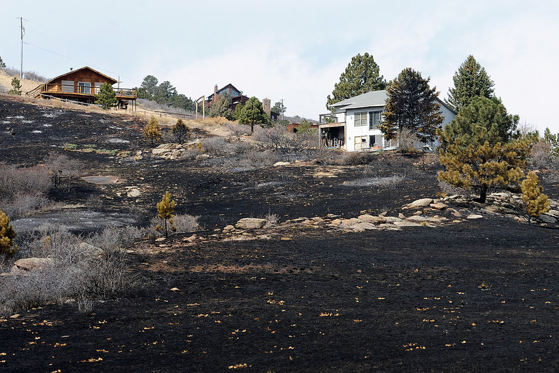 Homes that were saved by firefighters during the Galena fire dot the charred landscape west of Fort Collins in Lory State Park on Friday, March 22, 2013.