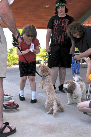 Morgan MacDonald, 7, left, shows off her ribbon from the Lions Club Pet and Doll Parade in Fairgrounds Park, Friday, to Mia, a bijon poodle mix.  Her brother, Taylor MacDonald, 16, and mother, Conni MacDonald, watch as their shitzu, Max, approaches Mia to make friends.