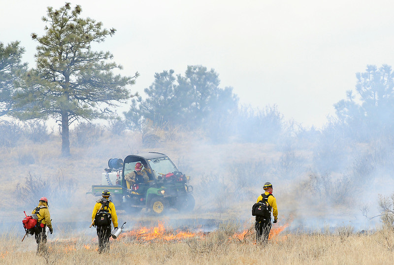 Wildland firefighters keep an eye on a section of grass that was ignited by drip torches March 31, 2010 as part of a prescribed burn on the Bobcat Ridge Open Space west of Masonville.